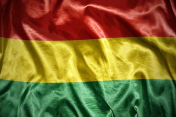 shining bolivian flag