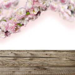 pink flowers  and wooden boards