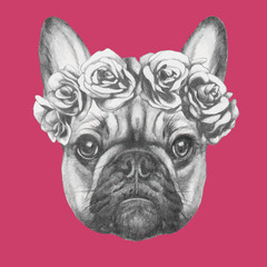 Hand drawn portrait of French Bulldog with roses. Vector.