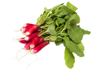 Fresh long red radish isolated on white background