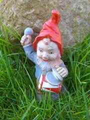 Gnome in the garden - Bild -