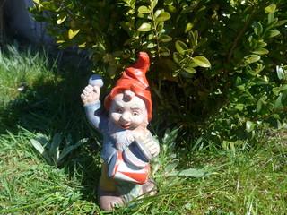 Gnom in the garden - Bild -