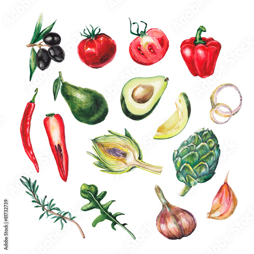 Juliste watercolor big vegetables set