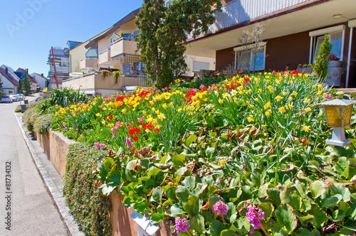 Frühling im Dorf - 81734132