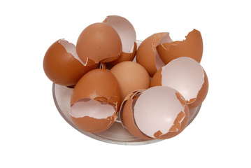 egg shell is on plate