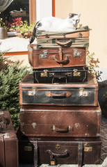 Old vintage leather suitcases stacked and cat on top
