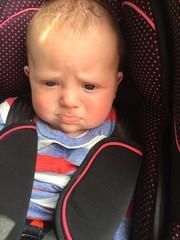 Grumpy in my car seat
