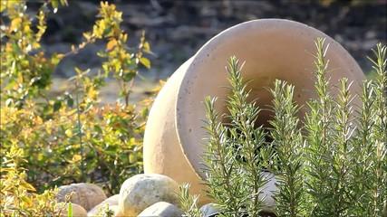Thymian im Garten, Hintergrund Amphore