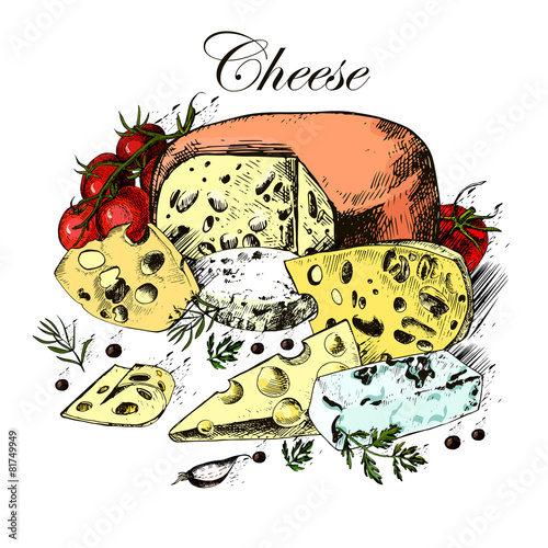 Fototapeta Hand drawing of dairy products, cheese, herbs and vegetables on