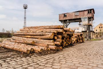 Abholzung Holzkran