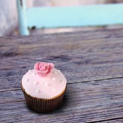 rosa rose cupcake auf holztisch