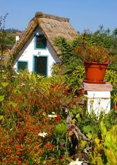 The traditional house of farmer at Santana at Madeira Island(Por