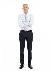 Senior sales man portrait
