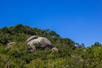 Colina, rocha e floresta