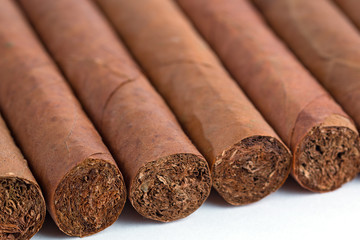 Cuban cigars isolated on white background