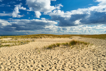 Landscape with sand dunes at Cape Cod