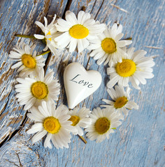 Love: white heart and daisies on blue background :)