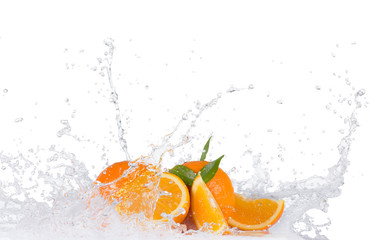 Oranges with water splashes on white background