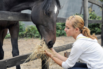 teenage girl feeding horse