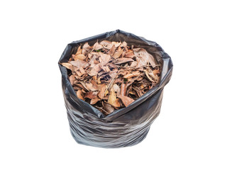 dried leaves in black plastic bag