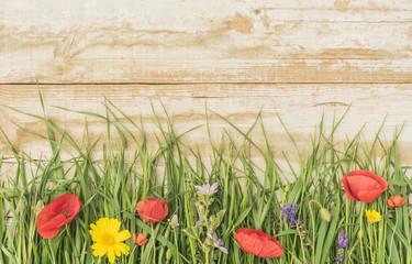Wiesenblumen mit Holzhintergrund