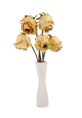 Dried roses in vase on white background