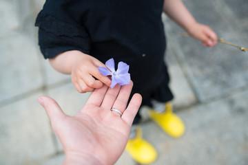 青い花を手渡す親子の手