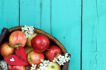 Basket of red apples and blossoms on blue wood background