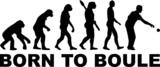 Boule Evolution