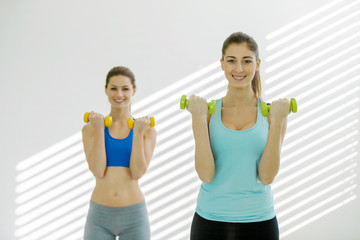 Two attractive women are doing exercises with dumbbells