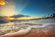 Exotic Beach in Dominican Republic, Punta Cana - 81774122
