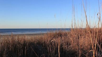 Pretty Cherry Grove Beach in winter