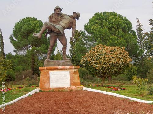 Foto op Plexiglas Turkey Turkish soldier carrying a wounded Australian soldier, Gallipoli