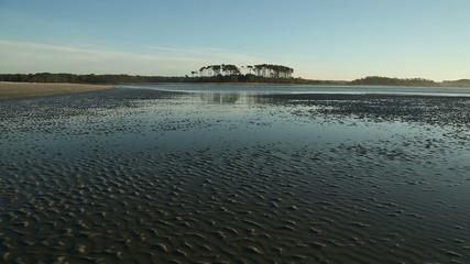 Morning tidal pools