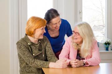 Happy Middle Age Women Talking at Dining Table.