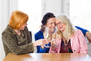 Happy Women Friends Having Wine at the Table.