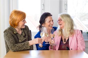 Happy Mom Friends Enjoying Glasses of Wine.