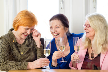 Happy Adult Friends Relaxing with Glasses of Wine.