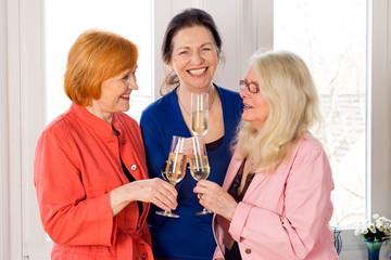 Mom Best Friends Enjoying Glasses of White Wine.