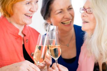 Happy Moms Celebrating Something with Wine. Close up.
