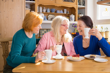 Cool Middle Age Female Friends Having Snacks.