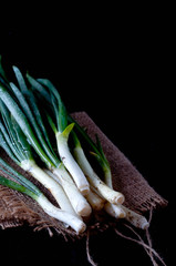 Spring onion with chives