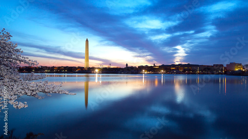 Washington Monument at night with cherry blossom - 81786505