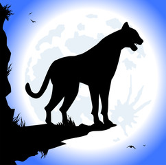 silhouette di pantera di notte con luna piena
