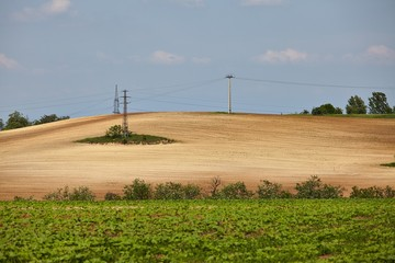 Agircutural field