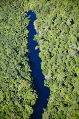 アマゾン川空撮
