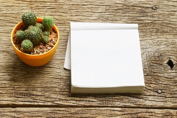 cactus and notepad on wood table