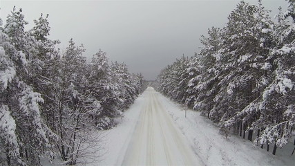 Snow-covered road and wood. Aerial winter shot