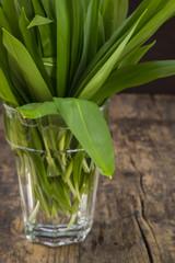 Bio-Bärlauch (Allium ursinum) auf Holzuntergrund