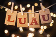 Luau Concept Clipped Cards and Lights - 81807530
